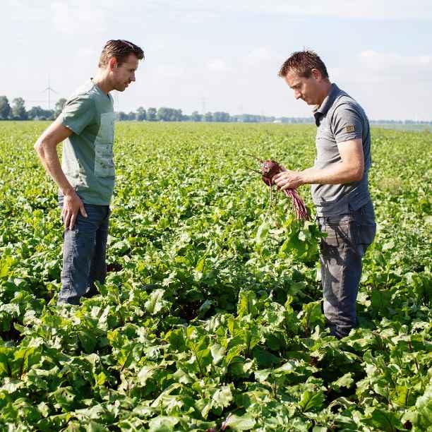 Beantwoord 5 stellingen over duurzame landbouw in 2040