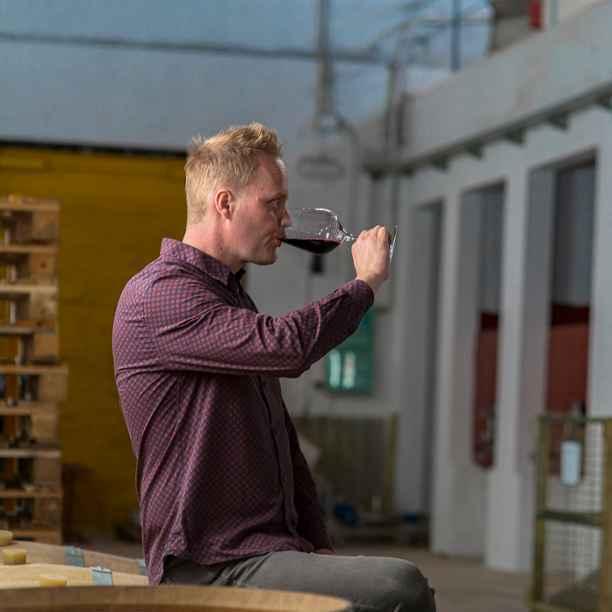 Volledig plantaardig gemaakte wijn bestond niet, tot Neleman het ging maken