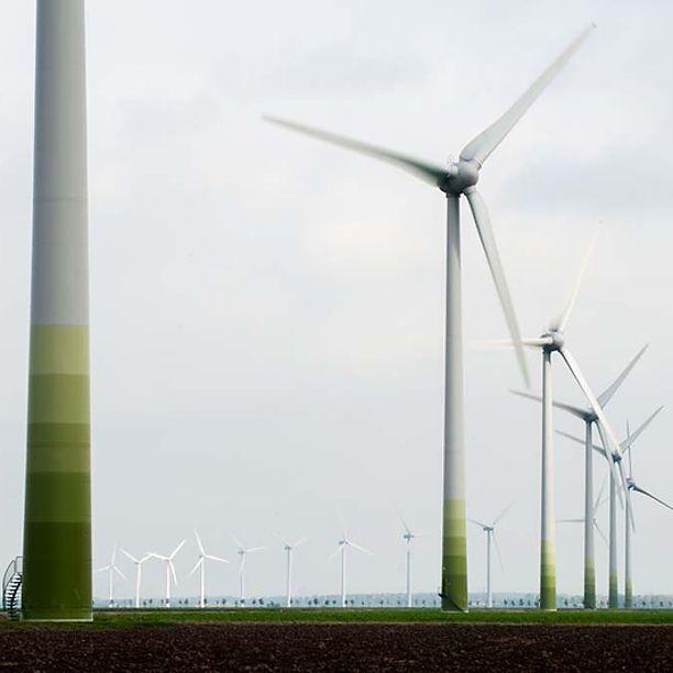 Welke energiebedrijven zijn écht groen? 2018