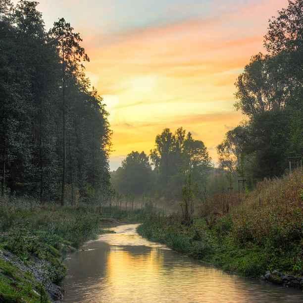 Ontwikkelingsbank zorgt voor terugkeer biodiversiteit in Ruhrgebied