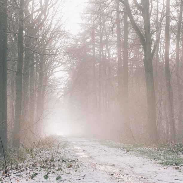 Duinwijck gasvrij | Initiatief voor behoud warmtenet op Vlieland