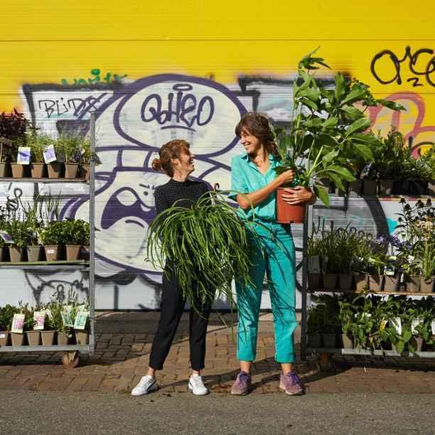 Biologische en duurzame planten die onze biodiversiteit een boost geven